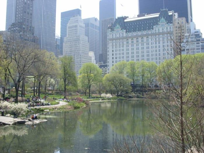 Lago Central Park
