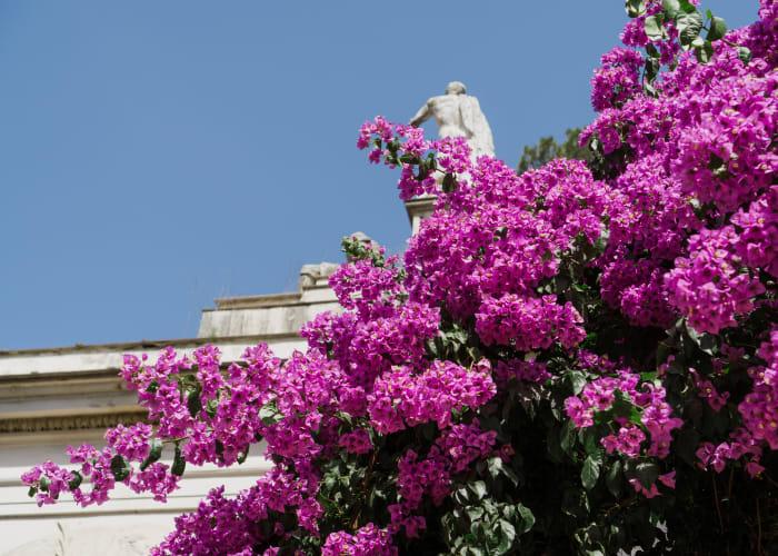 Jardins da Villa Borghese