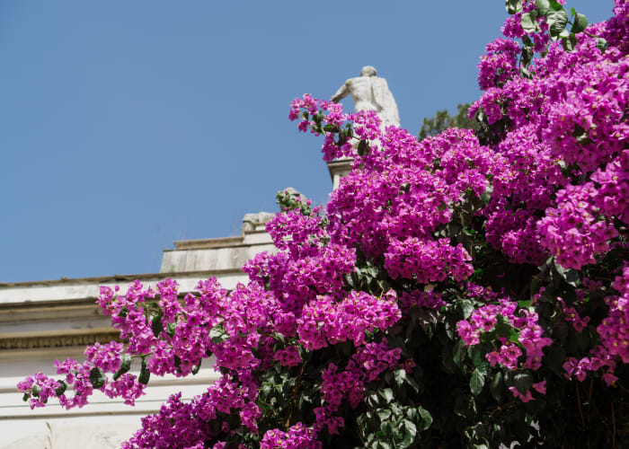 Jardin de la Villa Borghese