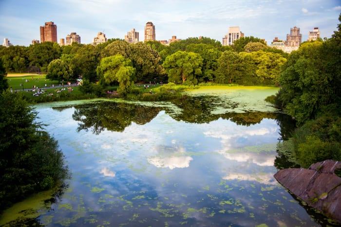 Vistas de Central Park