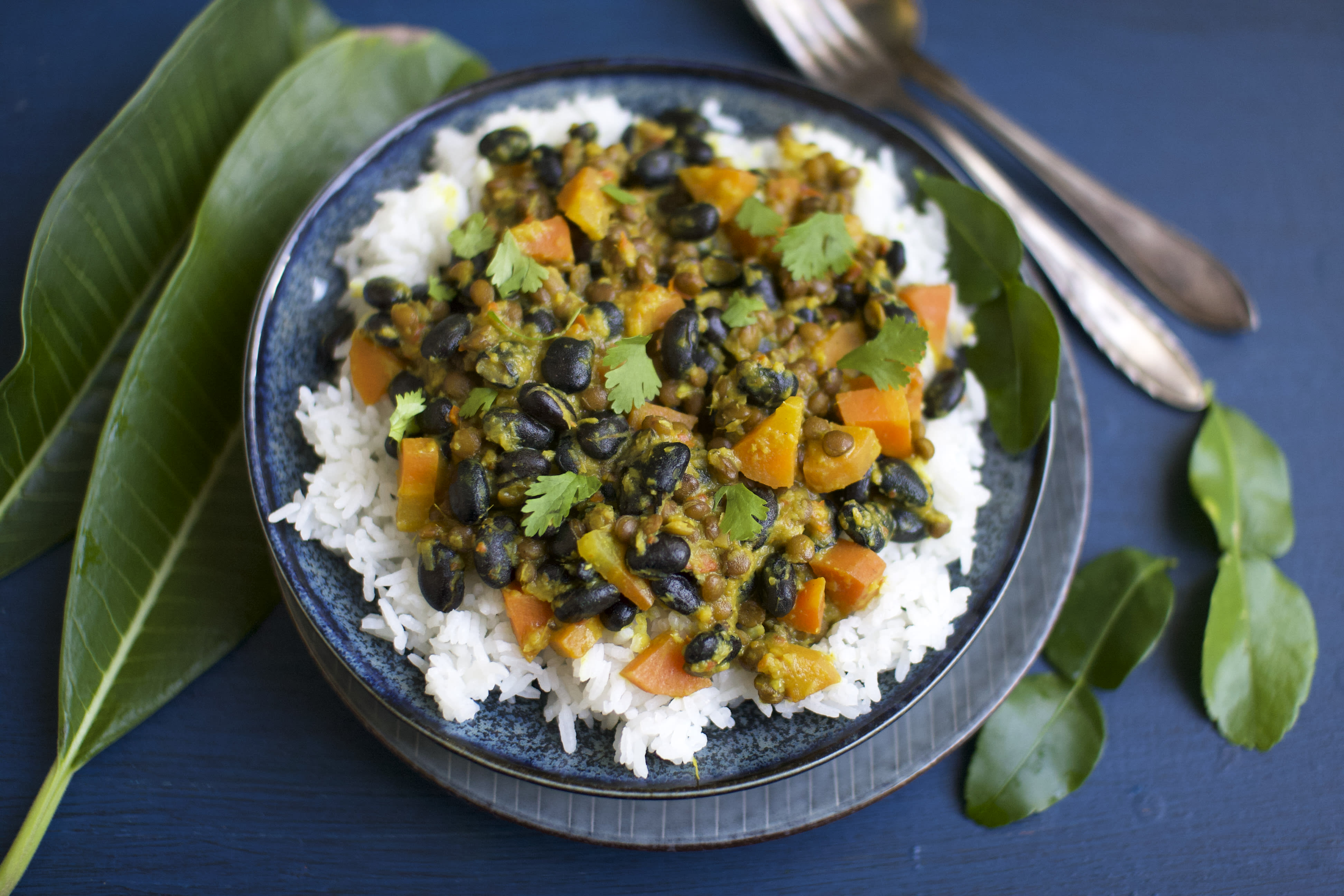 Indonesian Rendang with Lentils and Black Beans