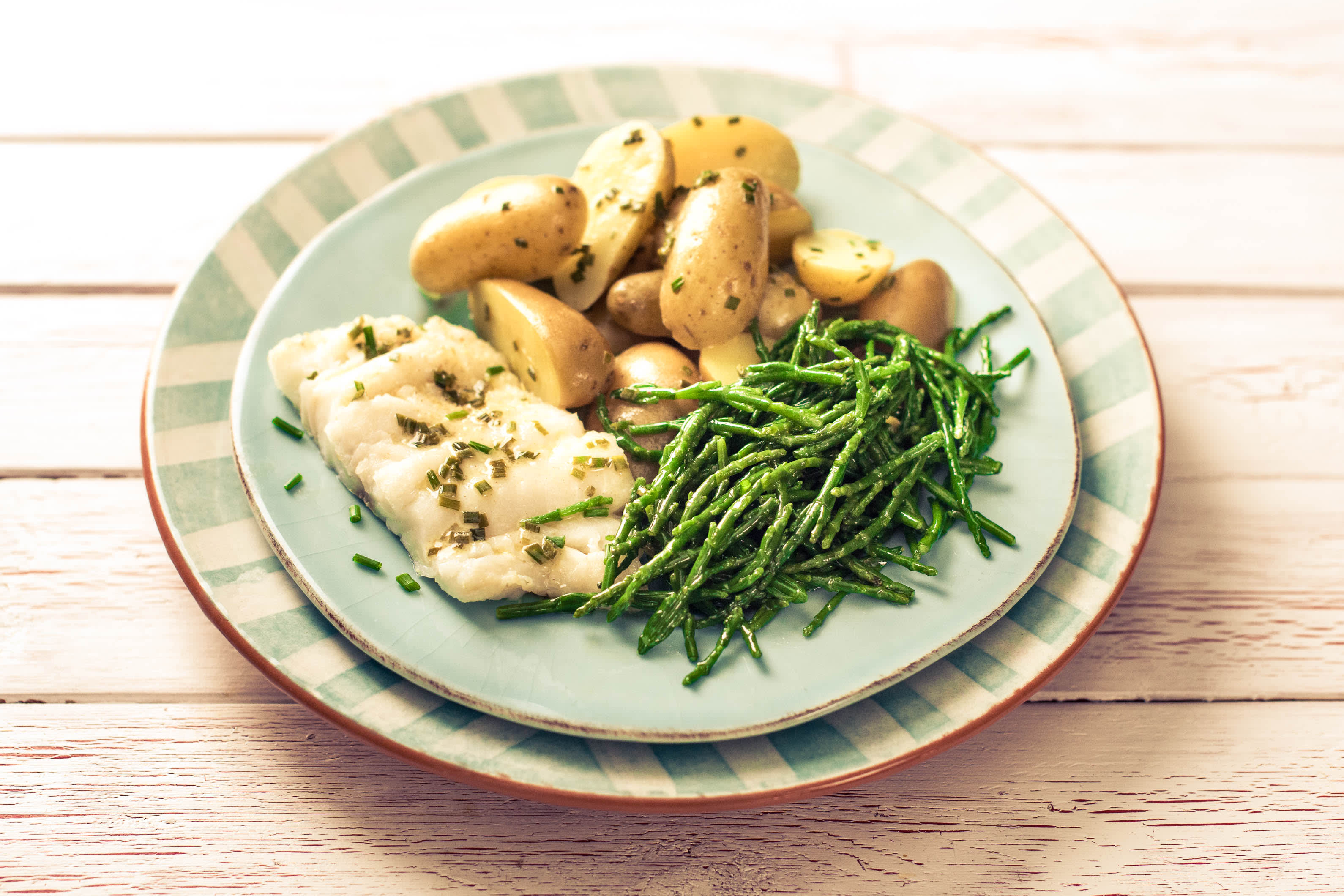 Tasteology Grilled Haddock and Samphire