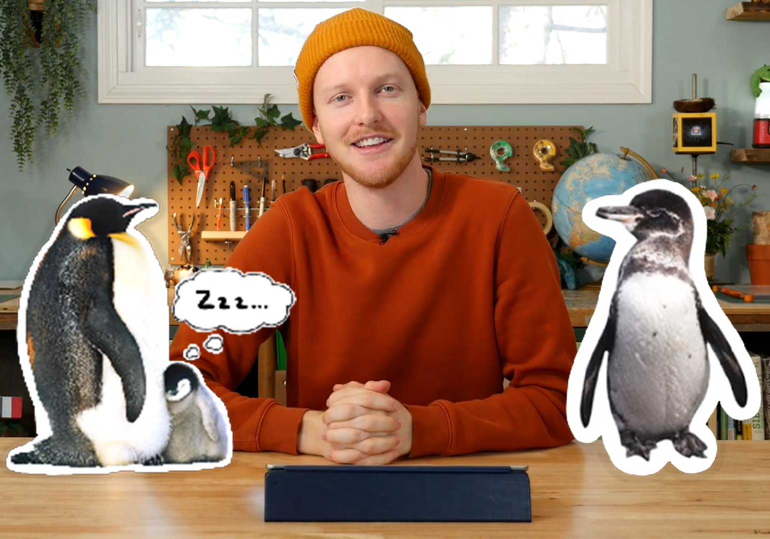 Penguins by World By Charlie