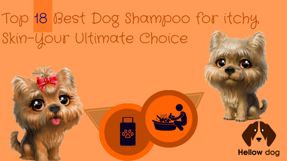 Top 18 Best Dog Shampoo for Itchy Skin-Your Ultimate Choice