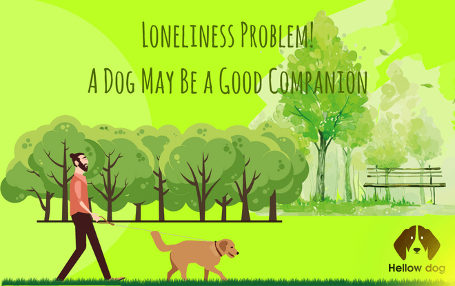 what is a companion dog ‎