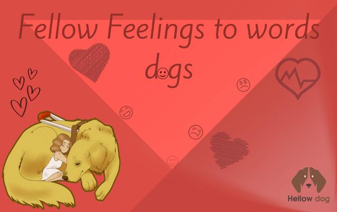 Fellow Feelings to Words Dogs
