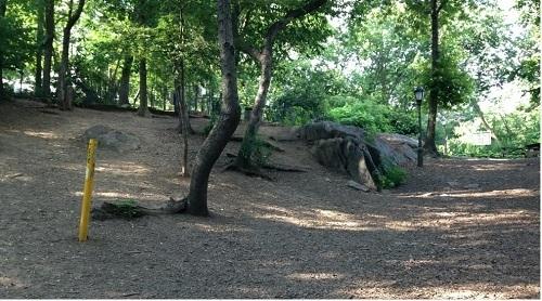 St. Nicholas Dog Park New York City, NY