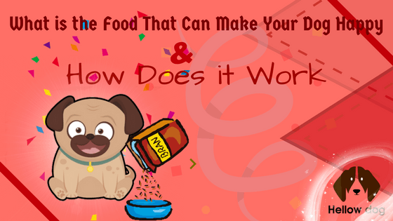 The Food That Can Make Your Dog Happy