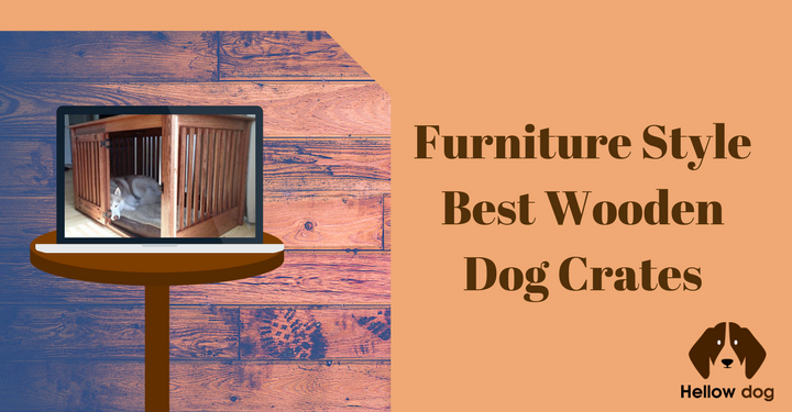 Modern Dog Crates Fashion Meets Function