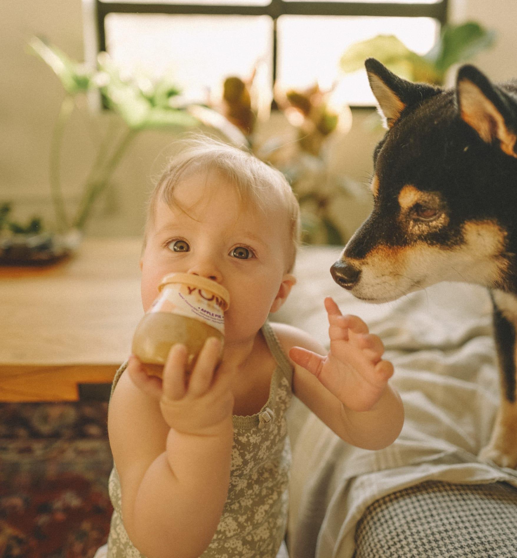baby holding yumi jar with dog looking at baby and jar