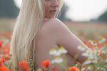October DiVine Poppyfield