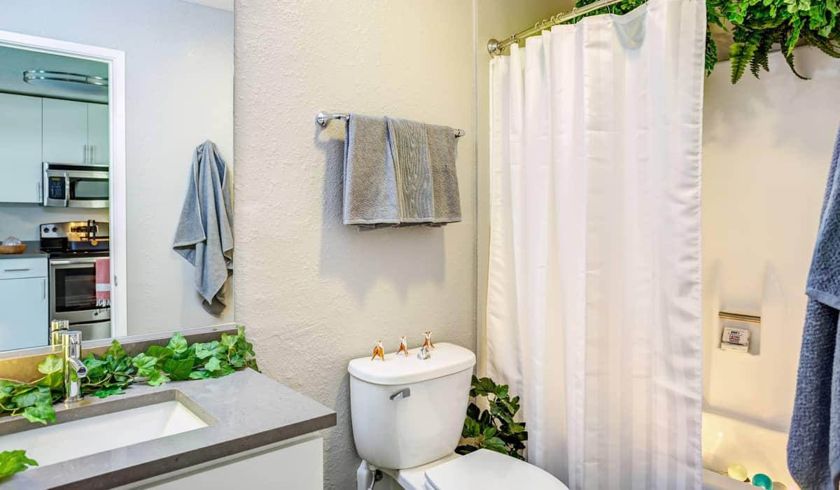 Spruce Apartment Bathroom