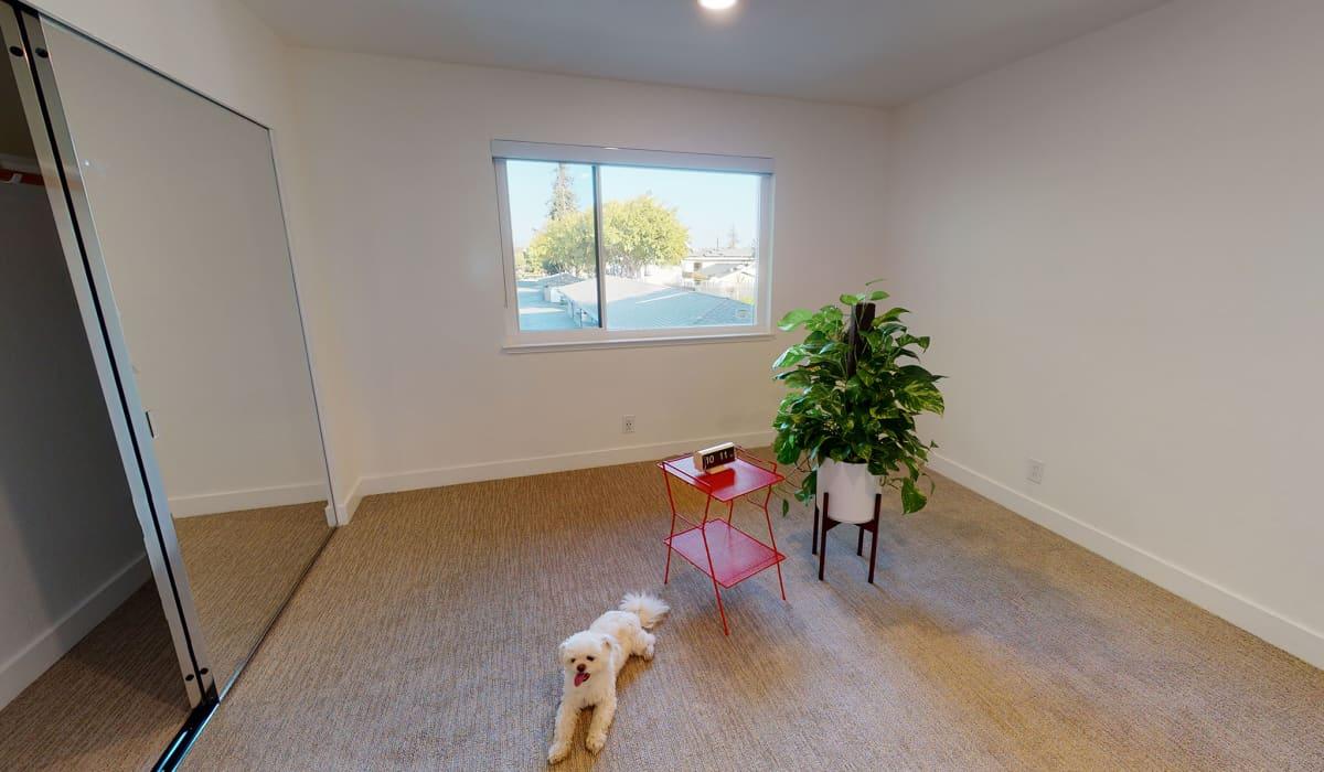 Verandas at Cupertino Apartment Bedroom