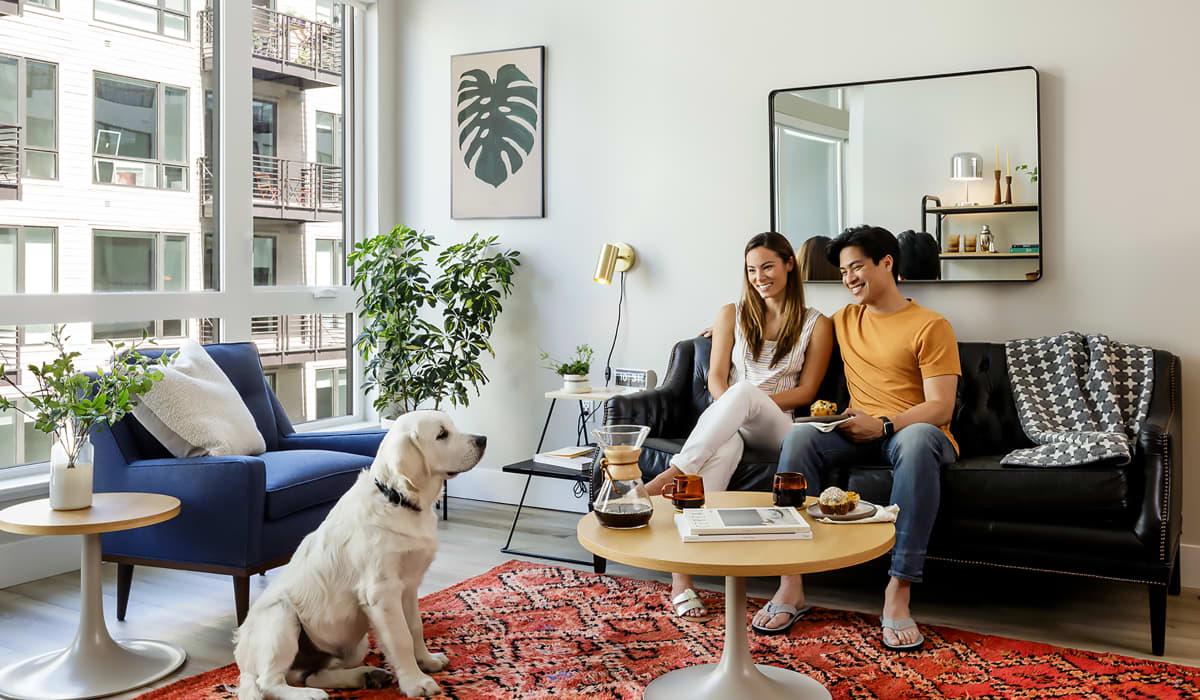 The Dean Apartment Living Room