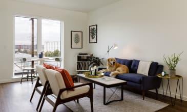 Raleigh Slabtown Apartment Living Room