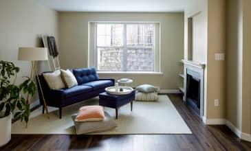 Birch Pointe Apartment Living Room