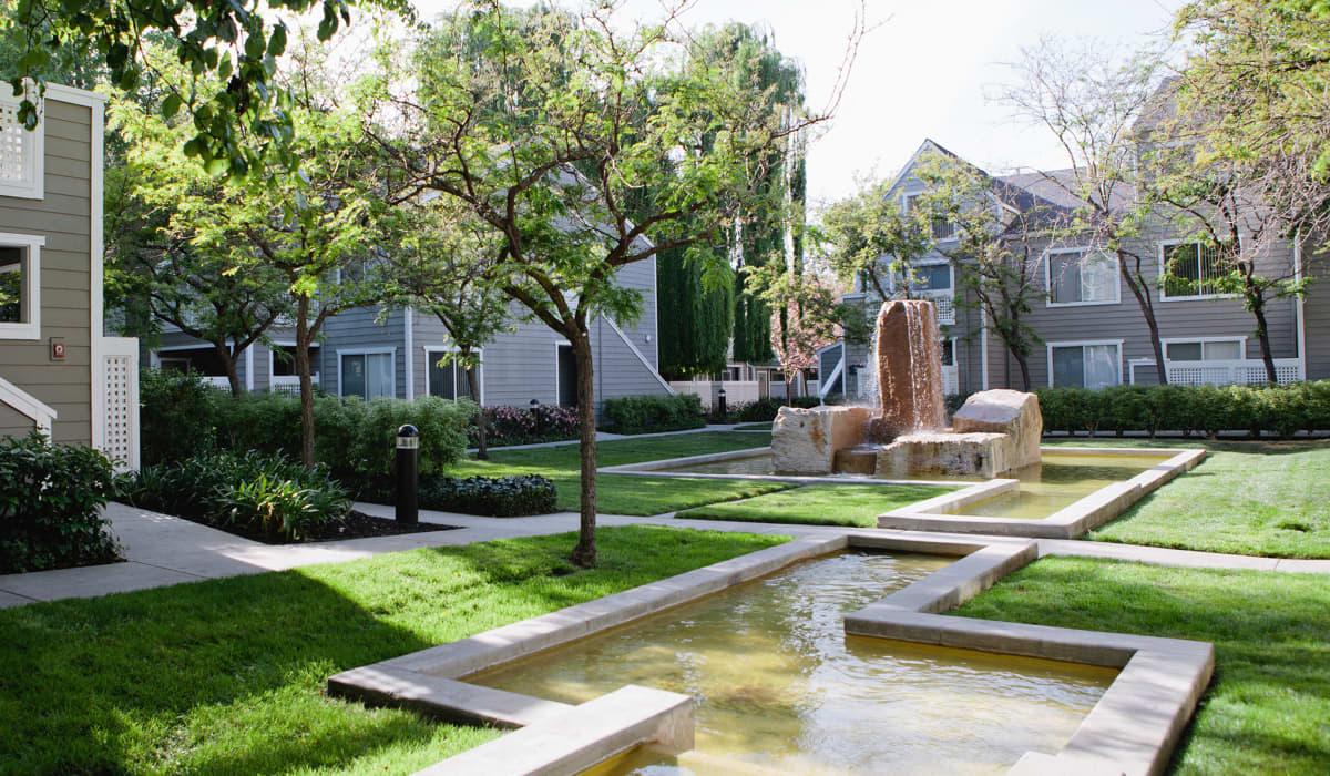 Timberleaf Courtyard
