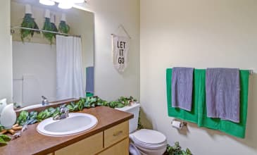 The Merrick Apartment Bathroom
