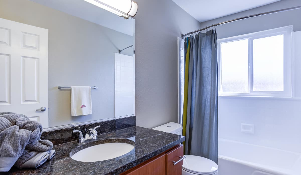 Chesapeake Point Apartment Bathroom