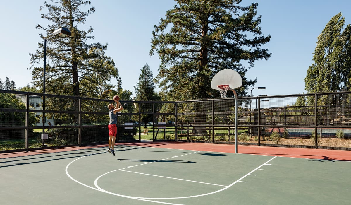 Mansion Grove Basketball & Tennis Courts