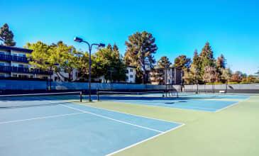 Spruce Tennis Court