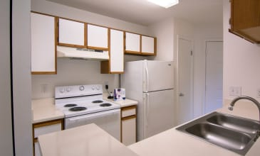 Emerald Place Apartment Kitchen