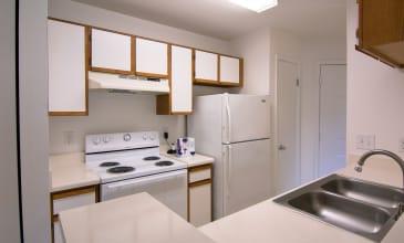 Emerald Place Apartment Kitchen