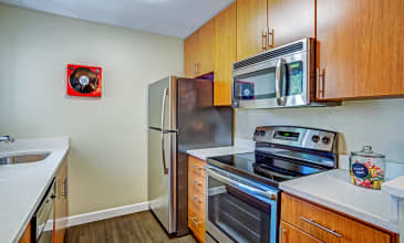 Alderwood Apartment Kitchen