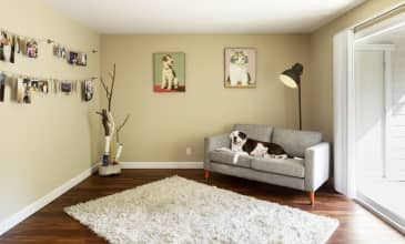 Timberleaf Apartment Living Room