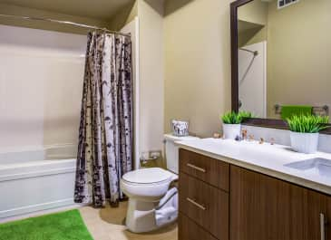 Madrone Bathroom