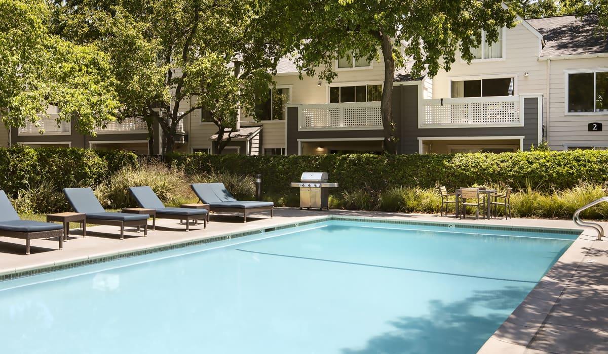 Timberleaf Pool