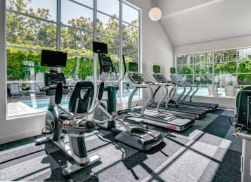 Park Place South Fitness