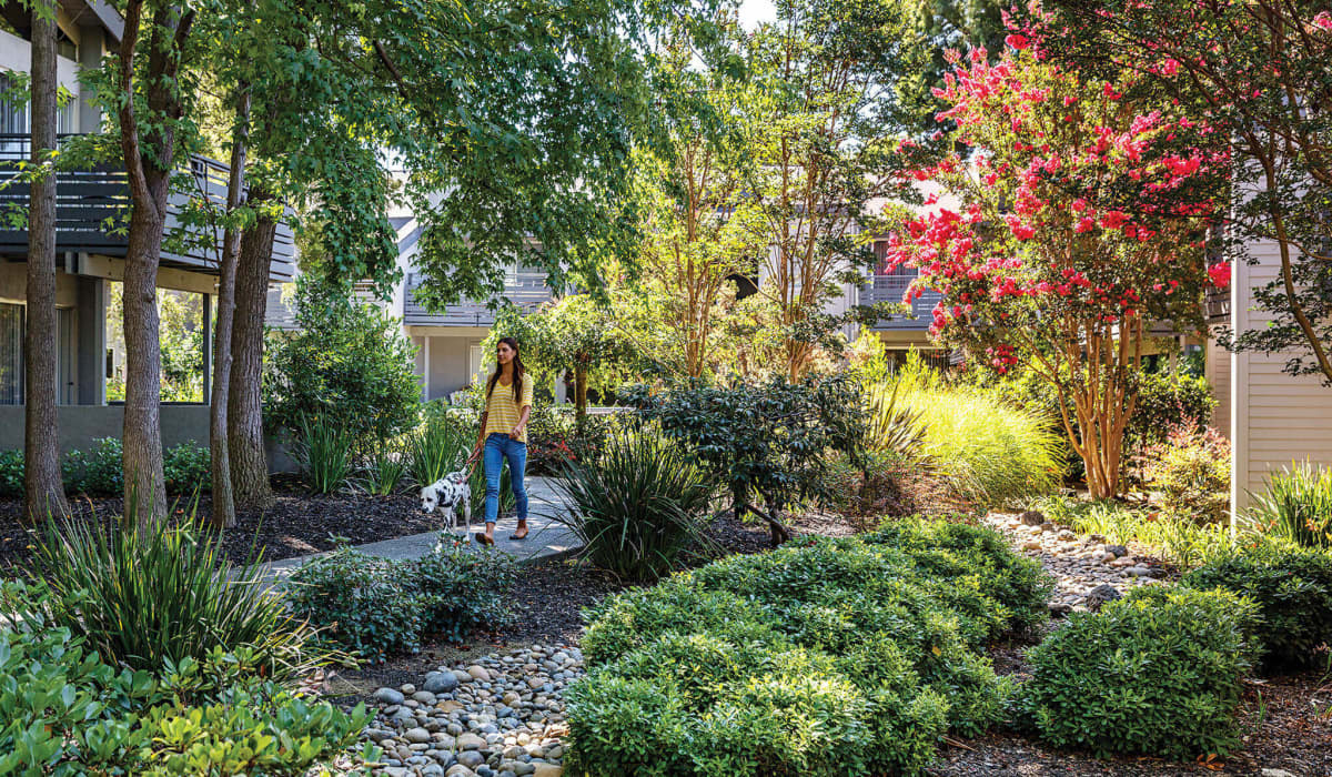 Shadowbrook Garden Path