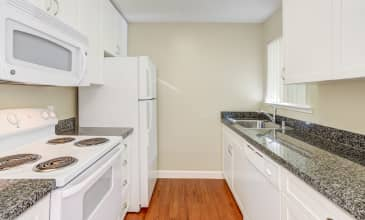 Timberleaf Apartment Kitchen