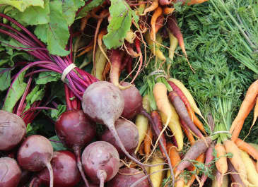 Seattle Farmers Markets