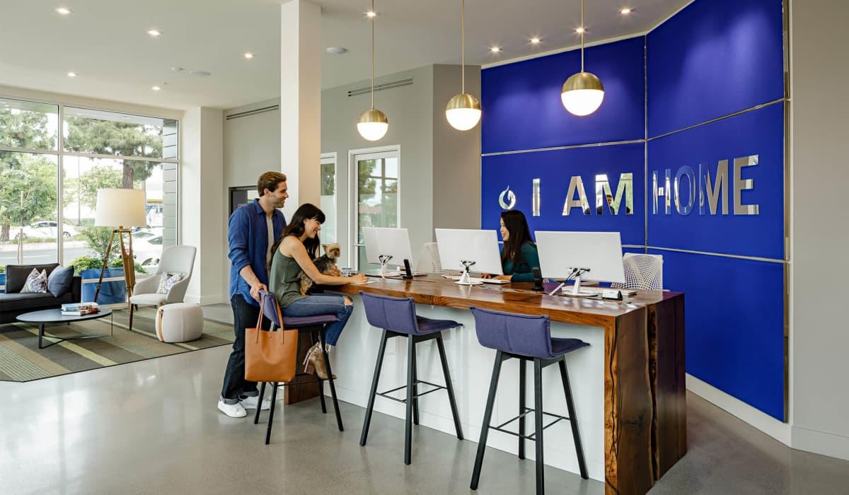 Cobalt Leasing Office