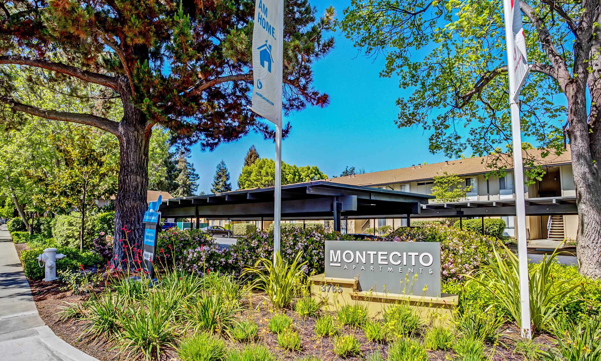 Montecito Apartments apartments in Santa Clara CA to rent photo 2