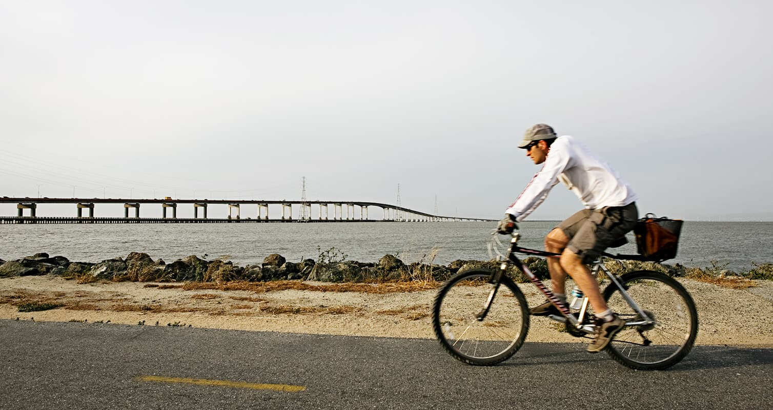 Outdoor picture with bridge in the background and man riding bicycle