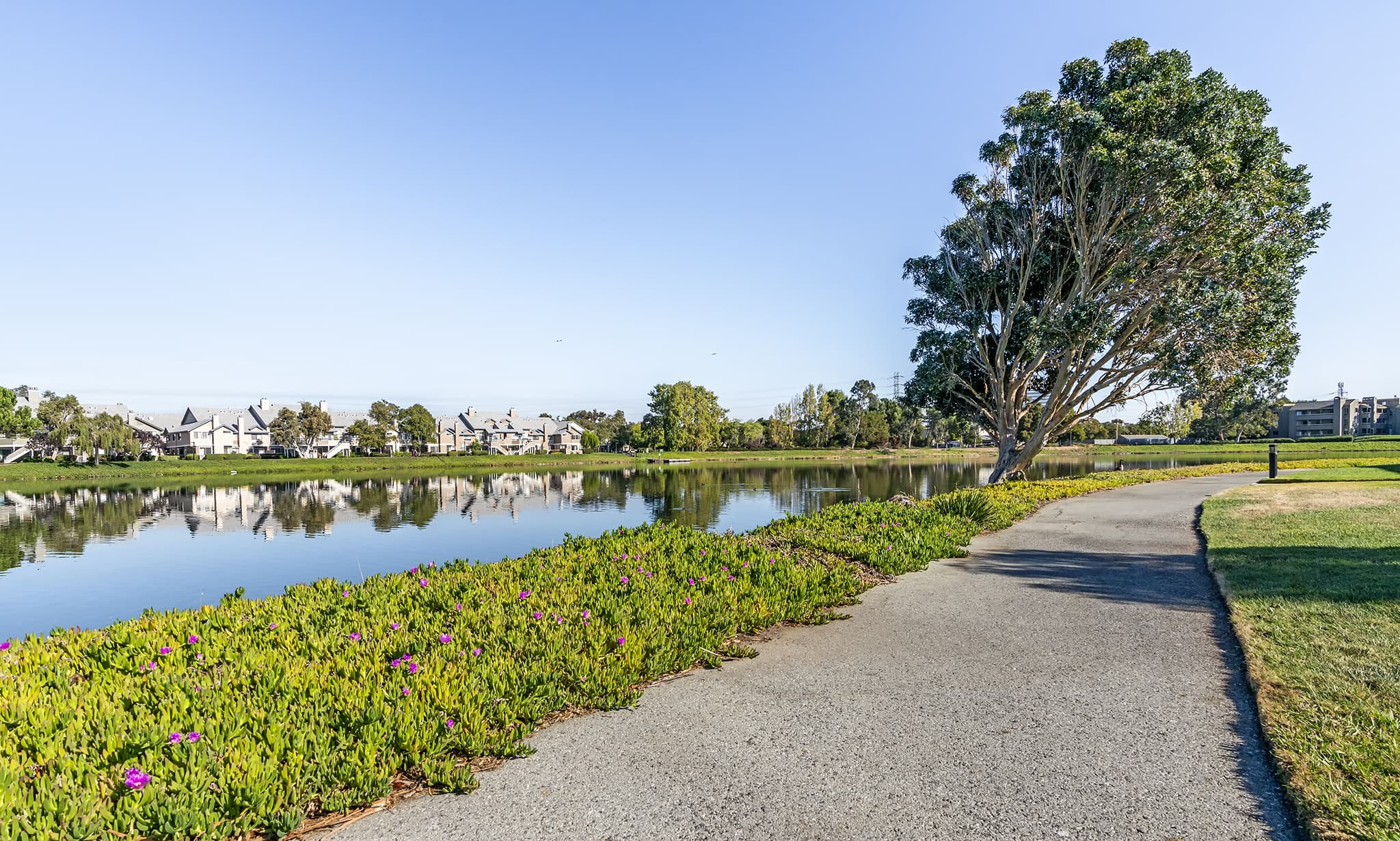 Chesapeake Point Apartments apartments in San Mateo CA to rent photo 2