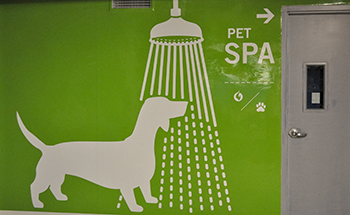 A decal of a pet spa with a dog under a shower
