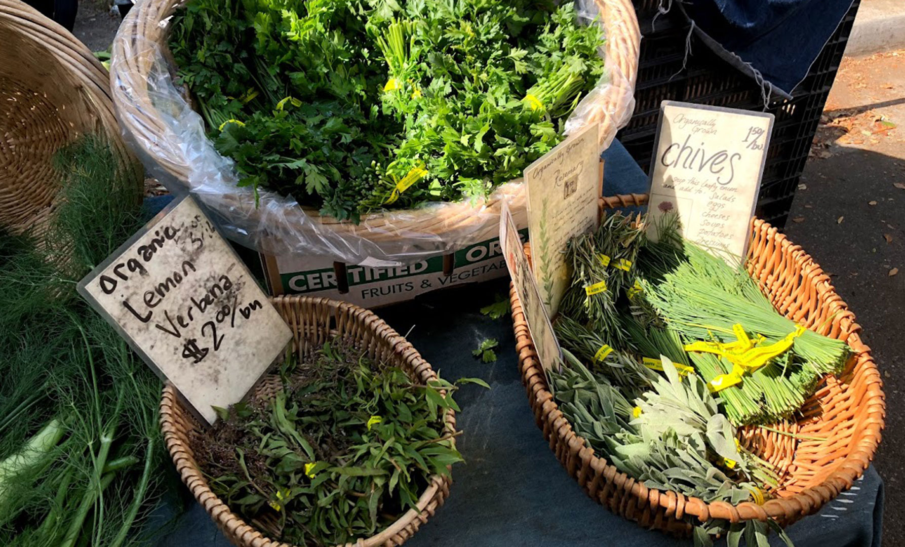 Hidden Gems at the Mountain View Farmers' Market