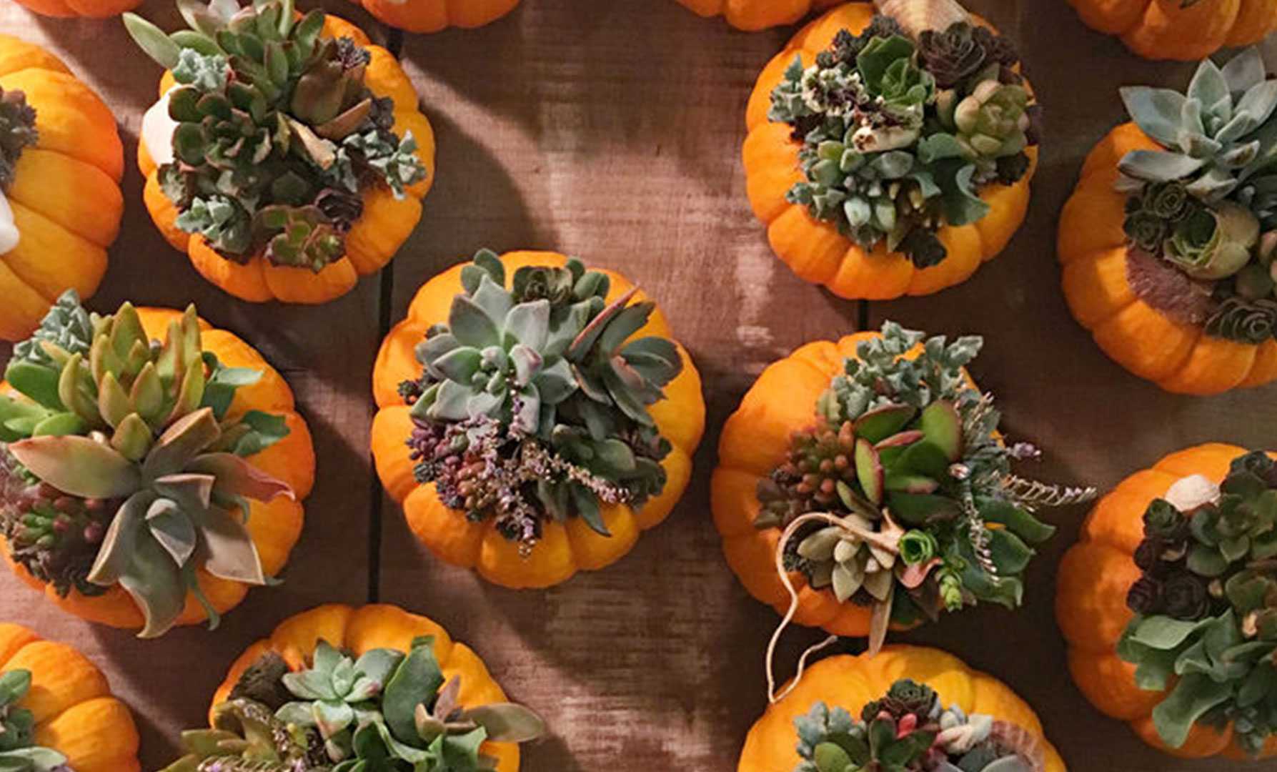 Home Inspiration: Fresh Ideas for Pumpkin Décor