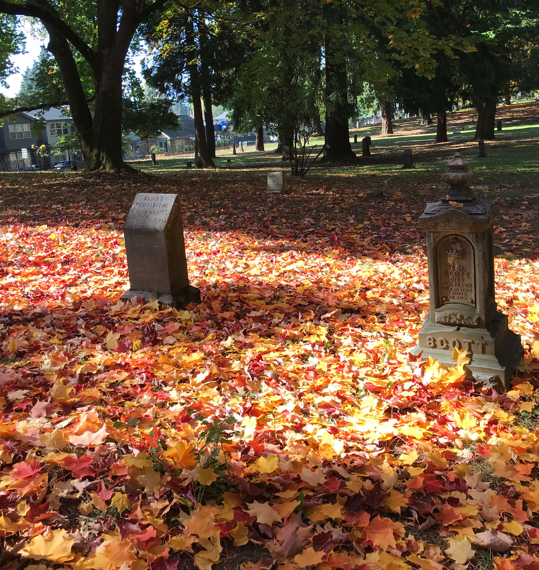 Explore Portland: Halloween Fun and Frights