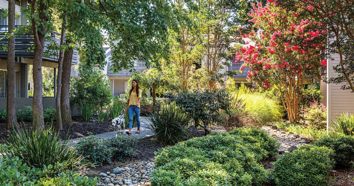 Sunnyvale Apartments | Shadowbrook | Prometheus