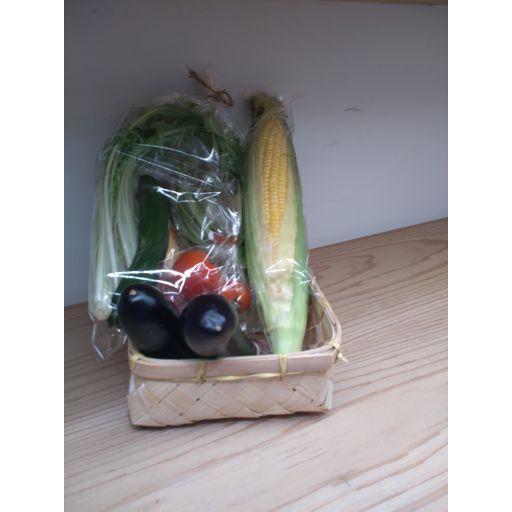 お試し!!ヤオヤスイカ季節の野菜セット -0