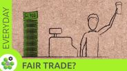 Fair Trade - Effects on Developing Countries