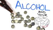 Alcohol - Effects on the Brain