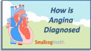 Angina Pectoris - Diagnosis
