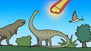 Mass Extinction Events - The Big Five