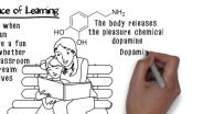 Dopamine - Role in Learning